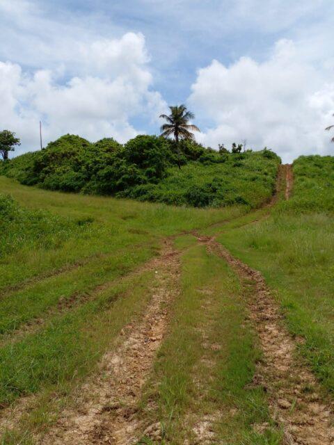 LAND FOR SALE – MAYARO
