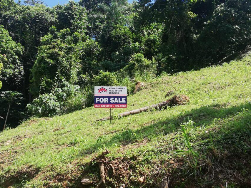 Sloping Land with Gorgeous Mountain View in Grace Gardens Santa Cruz – $850,000.00.